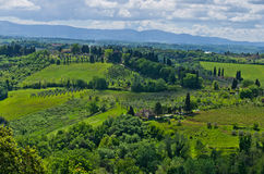 Hills, vineyards and cypress trees, Tuscany landscape near San Gimignano Royalty Free Stock Photo