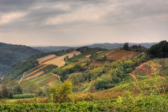 Hills and vineyards at fall. Piedmont, Italy. Royalty Free Stock Photography