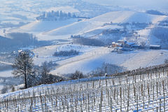 Hills and vineyards of Piedmont covered with snow. Royalty Free Stock Photos