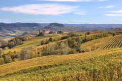Hills and vineyards of Piedmont at fall. Stock Photography