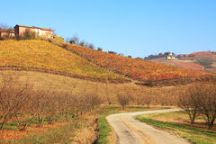 Hills and vineyards of Piedmont at fall, Italy. Royalty Free Stock Image