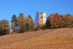 Hills and vineyards of Piedmont at fall, Italy. Stock Image