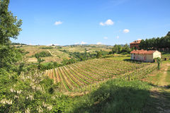 Hills and vineyards of Piedmont, northern Italy. Stock Image