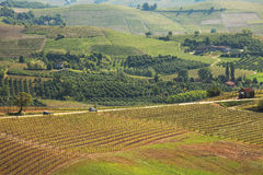 Hills and vineyards of Piedmont. Northern Italy. Royalty Free Stock Photos
