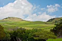 Hills of Waimea Royalty Free Stock Photos