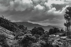 Hills of Wayanad Royalty Free Stock Images