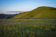 Hills and wildflowers in Oregon Stock Images