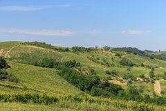Hills. Wine colture in Northern Italy hills Stock Image