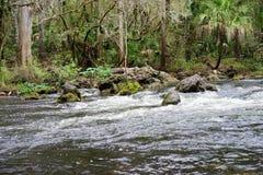 Hillsborough-Flusspark Lizenzfreie Stockbilder