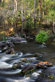 Hillsborough River, Florida Stock Photos
