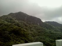 hillside стоковые фото