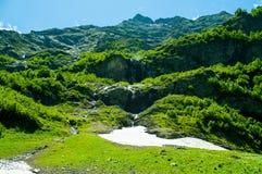 hillside Foto de Stock