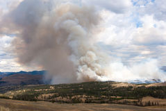 Hillside ablaze in Yellowstone Park. Forest fire in Yellowstone National Park, Wyoming USA Stock Images