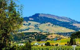 Hillside against a blue sky stock photos