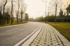 Hillside asphalt road in warm spring afternoon sunlight Royalty Free Stock Photo