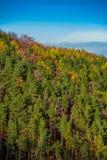 Hillside at autumn Stock Image