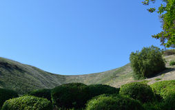 Hillside with Bushes. Chino Hills Stock Photography