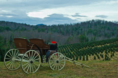 Hillside Carriage Royalty Free Stock Images