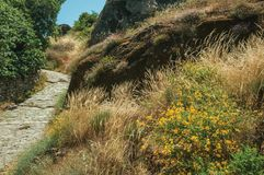 Hillside covered by dry bushes and rocks near Monsanto. Stone pathway passing through hillside covered by pretty flowers scattered around dry bushes and rocks stock photography