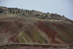 Hillside dans le ` s de l'Orégon a peint le ` national l monument de collines Photos libres de droits