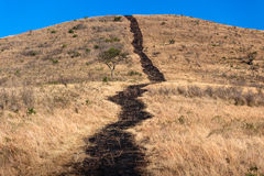 Hillside Dry Long Black Fire Break   Stock Photography