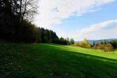 Hillside e bordo del paesaggio della primavera della foresta Fotografie Stock