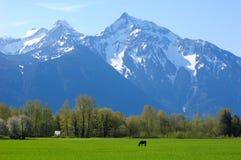 Hillside farm Stock Photo