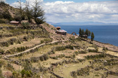 Hillside Farm on Lake Titicaca Royalty Free Stock Photos