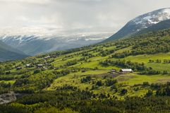 Hillside farms in mountains of Norway Stock Photography