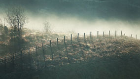 Hillside fence in mist Stock Photos