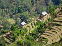 Hillside Fields and Village Stock Image