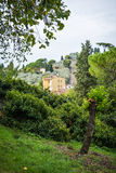 Hillside Florence (2) royalty free stock photography
