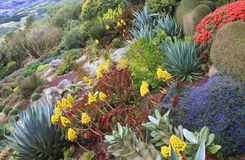 Hillside Garden at Larnach Castle NZ Stock Image