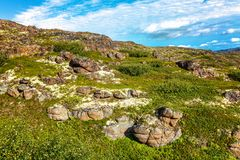 Hillside, green grass, stones, blue sky. Slope of the mountain with rocks, covered with green moss, blue sky with cirrus clouds, beautiful scenery, clear sunny Royalty Free Stock Photos