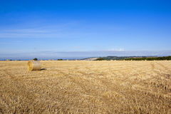 Hillside harvest Royalty Free Stock Photography