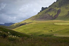 Hillside in Iceland. A hillside near the village of Vik, the southernmost point in Iceland Royalty Free Stock Photography