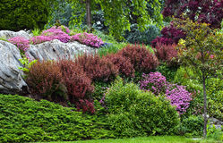 Hillside Landscaping Royalty Free Stock Photography