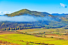The hillside mist and farmland Stock Image