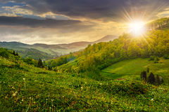 Hillside near the rural area in fog at sunset Royalty Free Stock Image