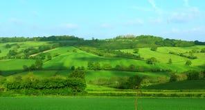 Hillside nel verde Fotografia Stock