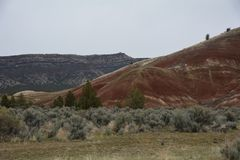 Hillside in Oregon`s Painted Hills Nat`l Monument Image 2 stock photography