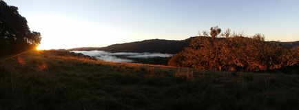 Hillside panorama sunrise. Lake sonoma sunrise, with fog in the valley Royalty Free Stock Photos