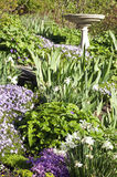 Hillside Perennial Flower Bed Royalty Free Stock Photography