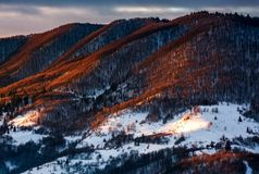 Hillside in red light on winter sunrise. Beautiful nature scenery in mountains Stock Image