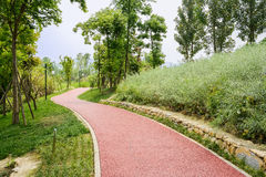 Hillside red path in verdant spring on sunny day Royalty Free Stock Photo