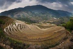 Hillside rice paddies. Panoramic view of hillside, terraced, rice paddies in Guilin, China Stock Image