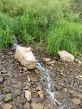 Hillside running brook stone grass. Stream water nature Stock Images