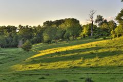 Hillside rurale Fotografie Stock Libere da Diritti