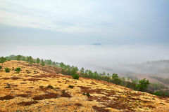 The hillside and sea of clouds Stock Photography