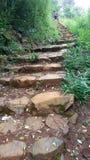 Hillside stairway stock image